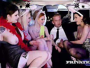 intercourse in the Limousine